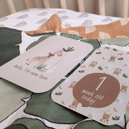 Monthly Moments Cards by Paper & Bean